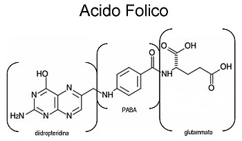 acido-folico-vitamina-B9