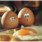 uovo e mito del colesterolo