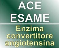ace_esame_enzima_convertitore_angiotensina